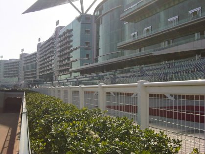 Duo Meydan Races